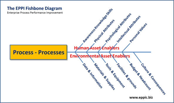 EPPI Fishbone v2012 - 1- The Process