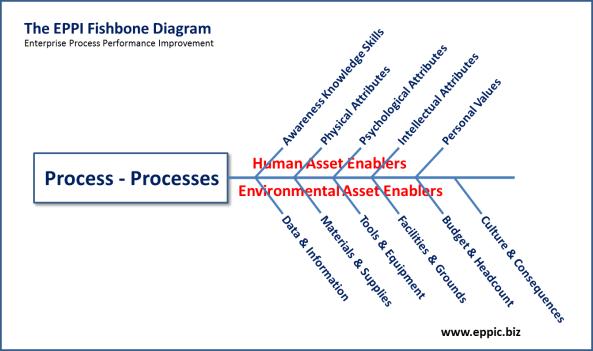 EPPI Fishbone 14 Variables
