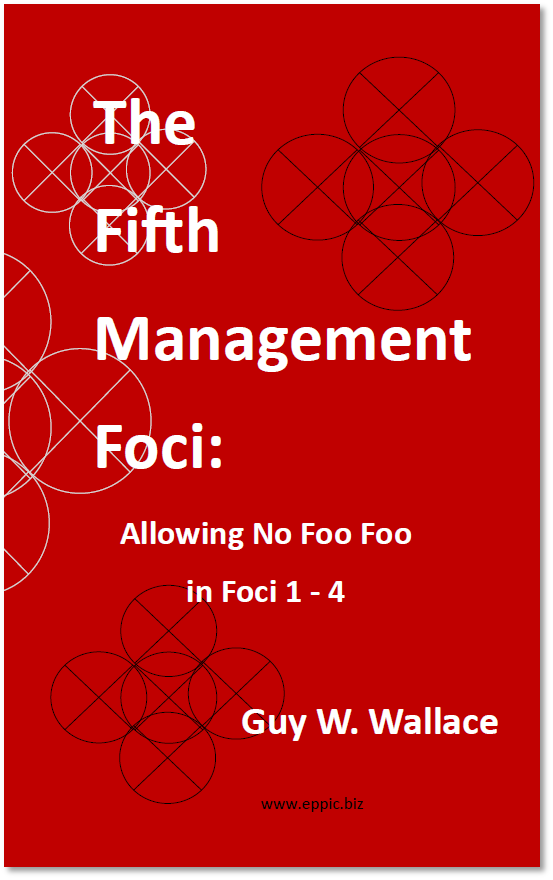 2011 i The Fifth Management Foci - book cover