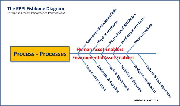 EPPI Fishbone 14 Variables - Process