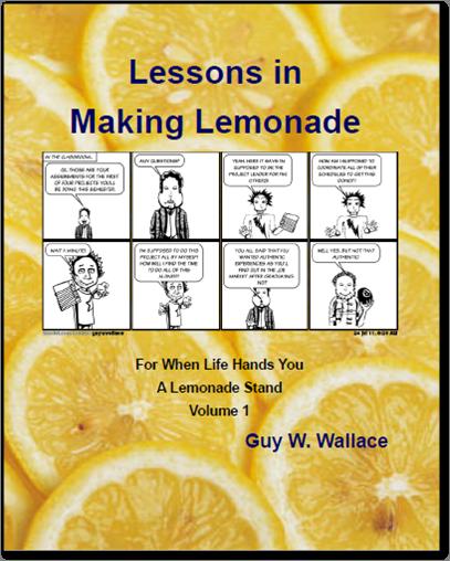 2011 h LiML Vol 1 2011 book cover